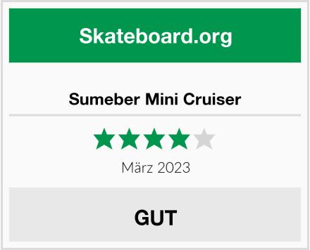 WeSkate Sumeber Mini Cruiser Skateboard Test