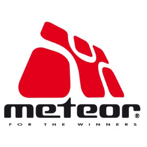 meteor Skateboards